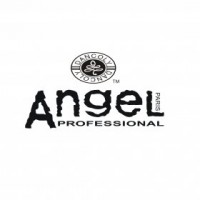ANGEL Professional (Ангел Профессионал)